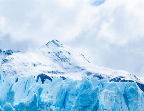资本寒冬之下,B2B企业如何打磨销售内功,练就御寒之术?
